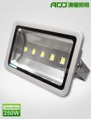 LED泛光灯 250WB