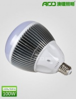 LED球泡灯 100WB
