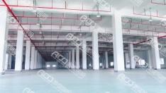 (8米混凝土厂房-100W工矿灯)佛山市允迪薄膜材料有限公司新厂房车间照明案例