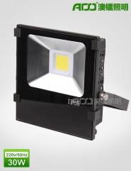 LED泛光灯 30WS