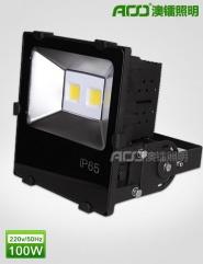 LED泛光灯 100WS