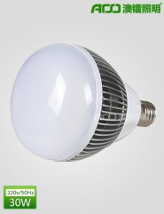 LED球泡灯 30WB