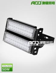 LED隧道灯 100W  FT