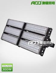 LED隧道灯 300W  FT